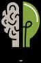 Bilgi Yarışması - Bilginin Kazandıran Adresi